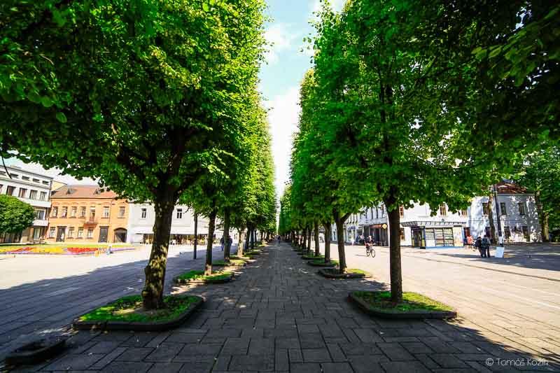 Kaunas_2